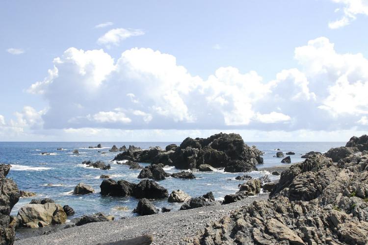南海トラフ,臨時情報