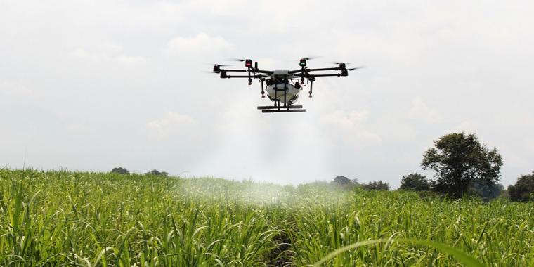 AI,農業